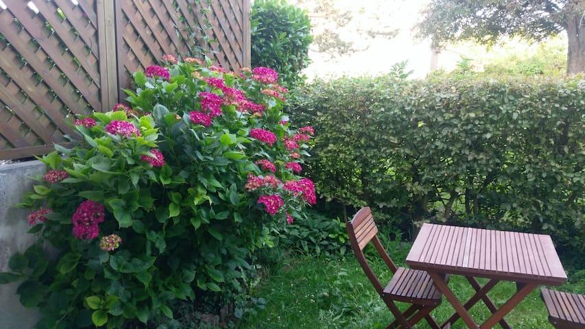 petit jardin côte salle à manger
