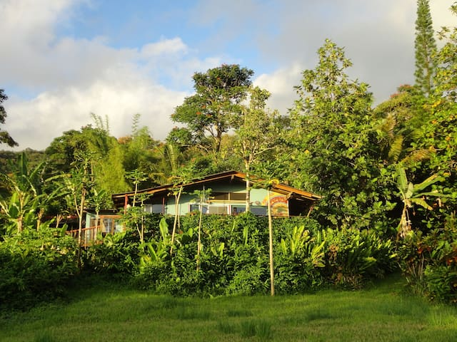 Hana Lani Pole House and Treehouse - Hāna - Casa