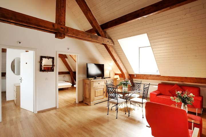 center Geneva, 2 bedrooms apartment, full AC