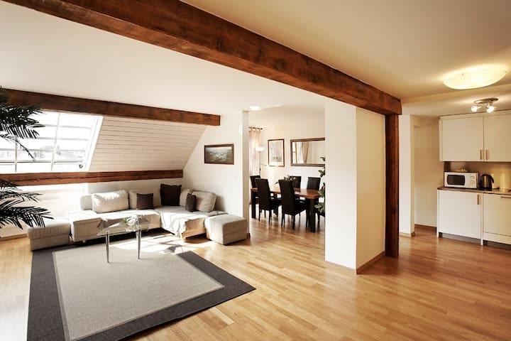 Geneve centre,2 chambres lumineux, air conditionné