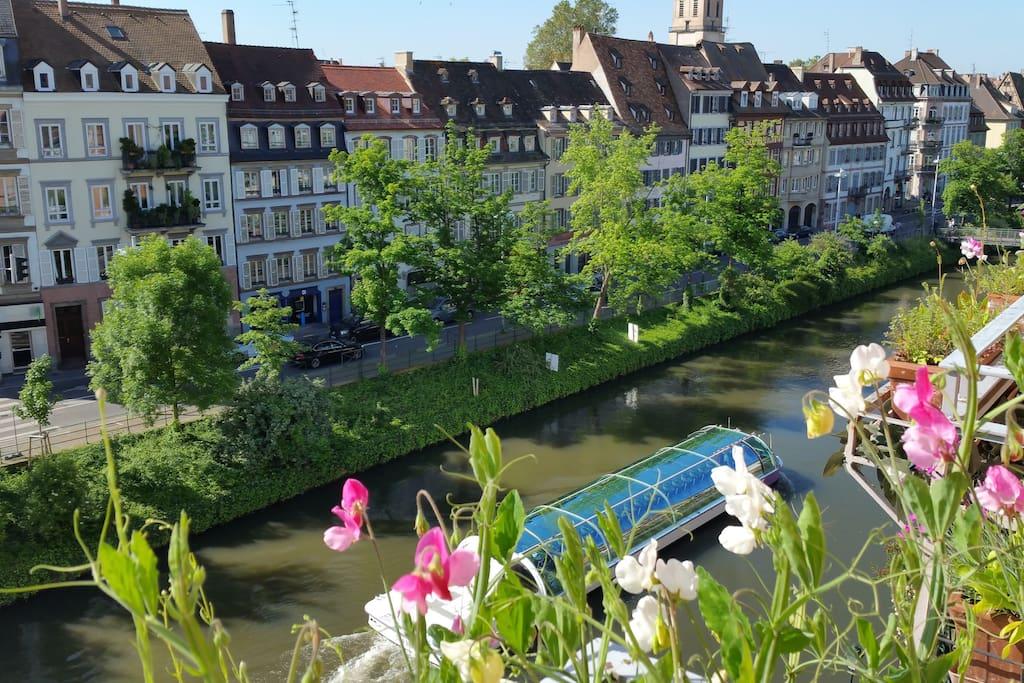 Louer Appartement Centre Ville Strasbourg