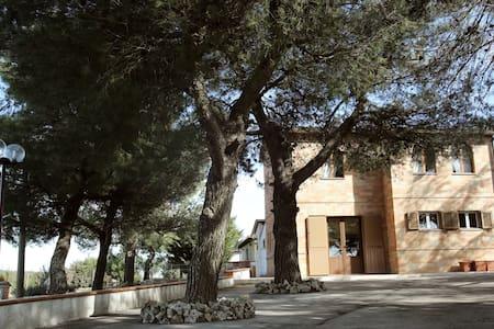 B&B con vista Castel del Monte - Andria - B&B/民宿/ペンション