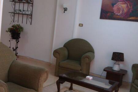 Fully Furnished Apt. in Alexandria