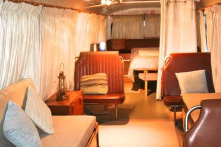 Bus Beauty - Byron Bay - Annat