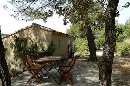 maisonnette de charme en provence - Peyrolles-en-Provence - Haus