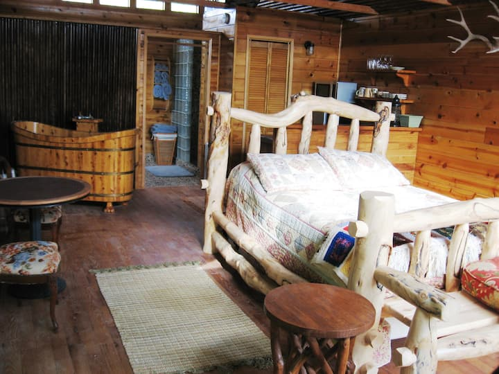 Shady Lady Bed and Breakfast- Willow Tree Cabin