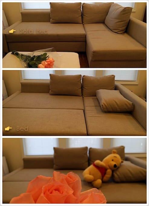 Transitable sofa bed, $20 extra and let me know if your party needed so I could set it up.
