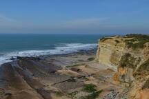 Beautiful beaches in the area. For example, the perfect surfing beach of Ribeira d'Ilhas in Ericeira.