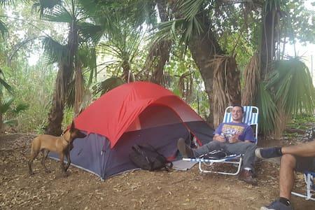 Outdoor surrounded by trees - San Bernardino - Khemah