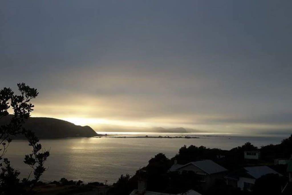 dawn view from backyard