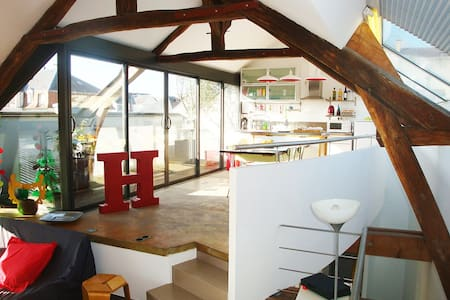 Enjoy a 150m2, 4 bedrooms loft  - Fontainebleau