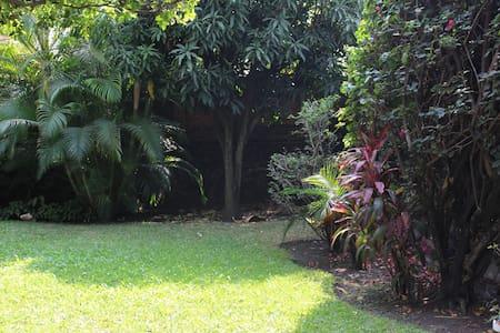 Linda casa de un nivel y precioso y enorme jardín. - Jiutepec - Chalet