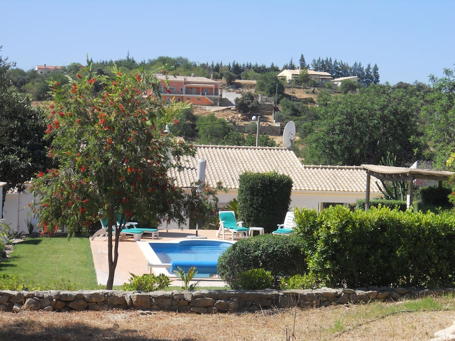 A view of the pool and house from the orchard