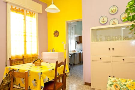 Bright spacious apartment - Mirandola - Huis