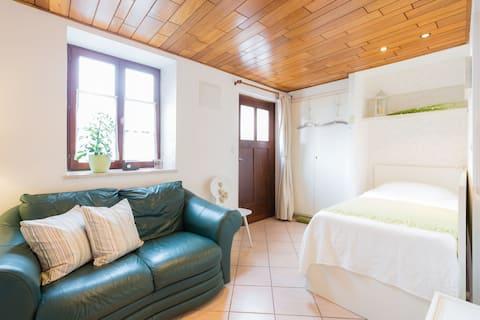 Cosy Studio apartment - Strasbourg/Haguenau area