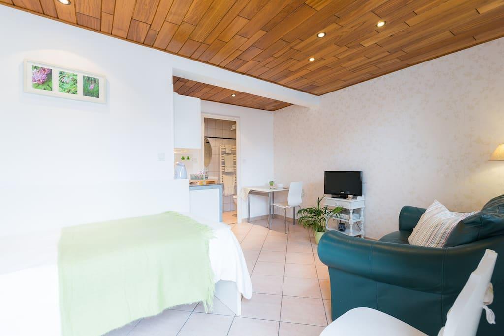 cosy studio apartment strasbourg haguenau area wohnungen zur miete in ohlungen elsass. Black Bedroom Furniture Sets. Home Design Ideas