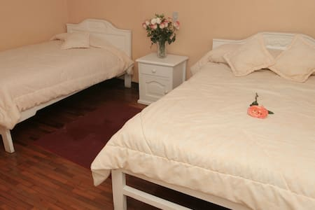Twin Superior Room in Alausí - 里奥班巴 - 住宿加早餐