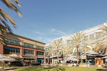 Santana Row Modern Loft in Silicon Valley