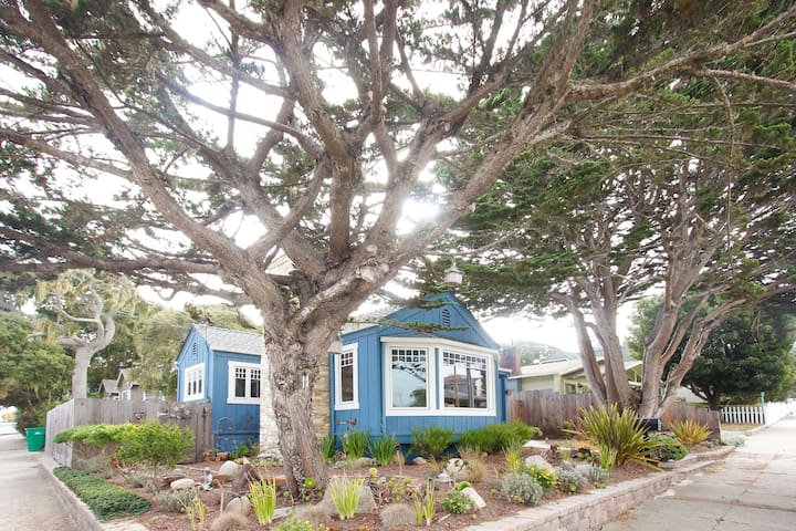 Pacific Grove Blue House, Walk to Town and Beach!