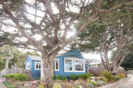 Pacific Grove Blue House, Walk to Town and Beach! - Pacific Grove - Casa