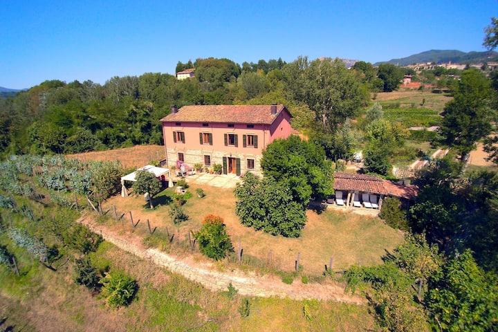 Acogedora casa de vacaciones en Castiglione di Garfagnana con barbacoa