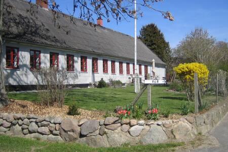 Hestestalden på Søgaarden - Gilleleje