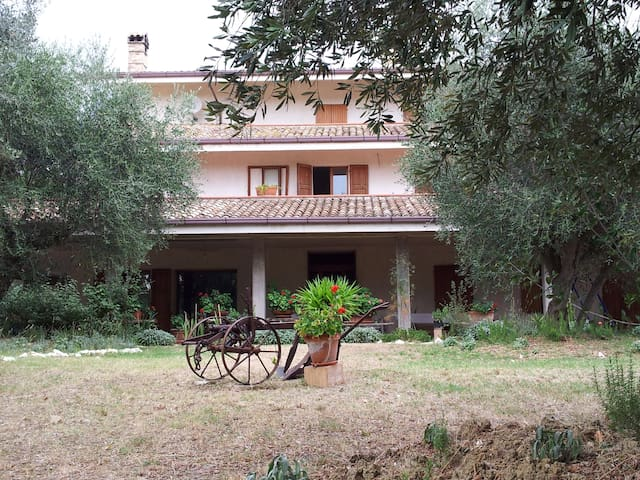 B&B Agricola Le Grazie - Magliano di Tenna - Bed & Breakfast