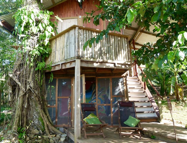 Whimsical Treehouse on Cacao Farm in Dolphin Bay - Bocas del Toro Province - Treehouse