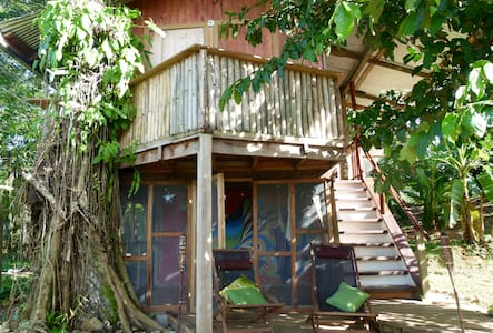 Whimsical Treehouse on Cacao Farm in Dolphin Bay - Bocas del Toro Province