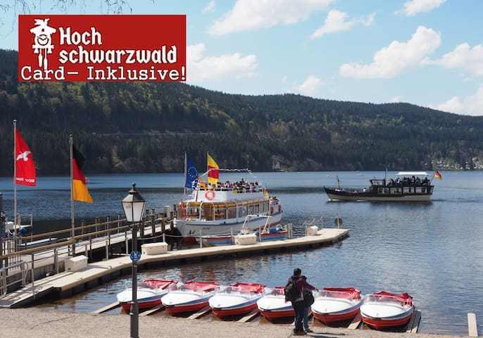 Black-Forest-Fewo C2, Pool +100 attractions free