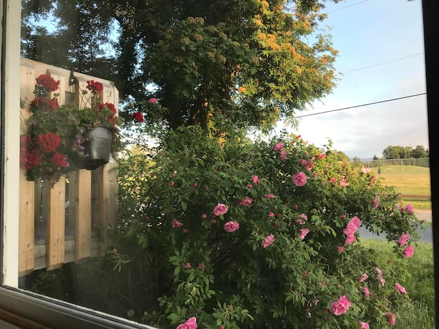 RedMaple - MountainView-Close to downtown, JBER