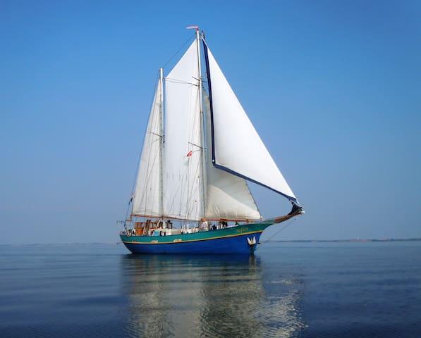 Adventurous Sailingvessel