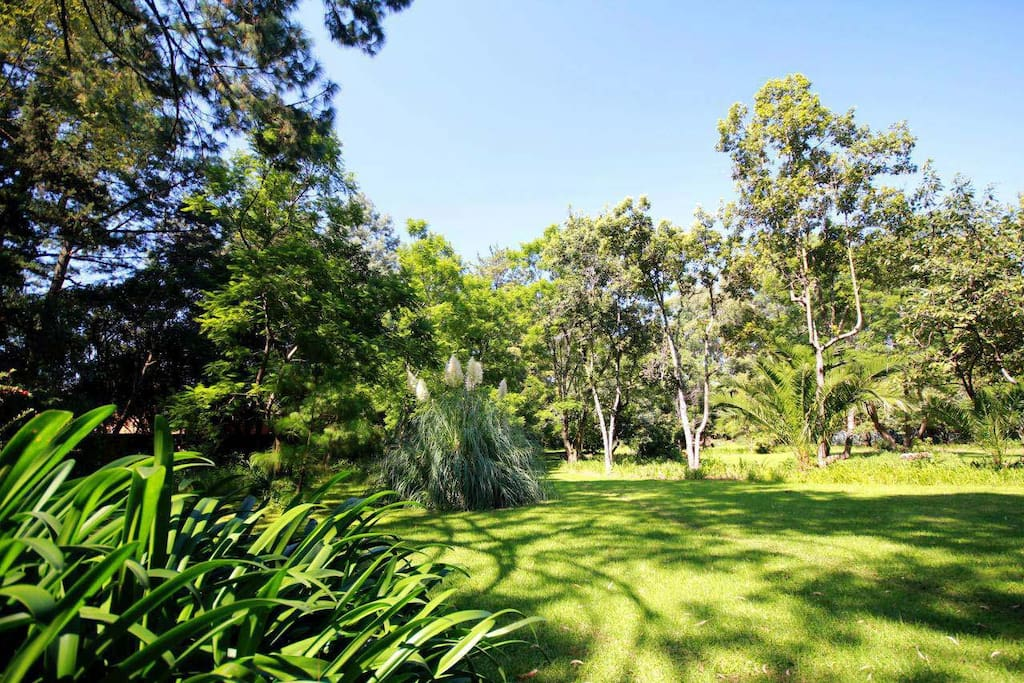 5 Acres of Beautiful Gardens to roam around in