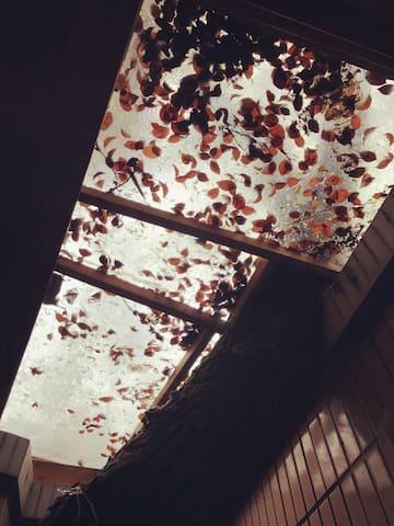 树屋:孤独花园 - Changsha - Huis