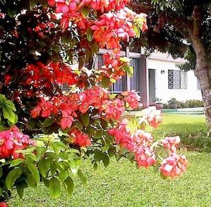 Mandeville's Country Home Villa - Mandeville - Villa