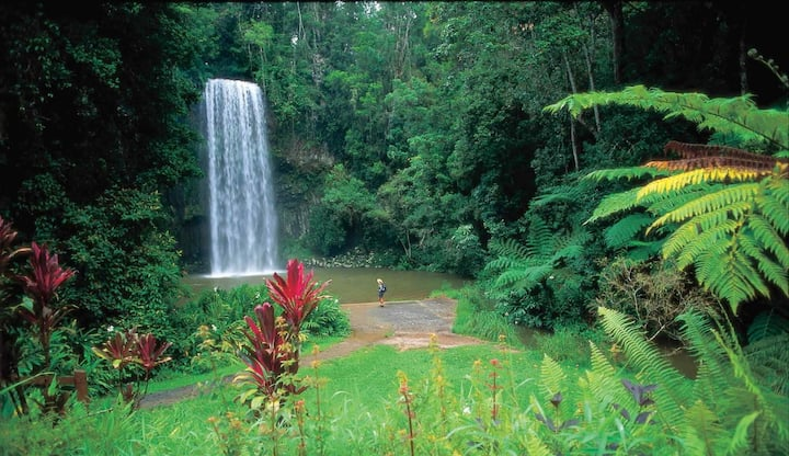 Secluded Rainforest Haven With Beautiful Scenery