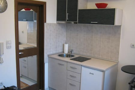 Great apartment in downtown Nis - Nis - Lägenhet