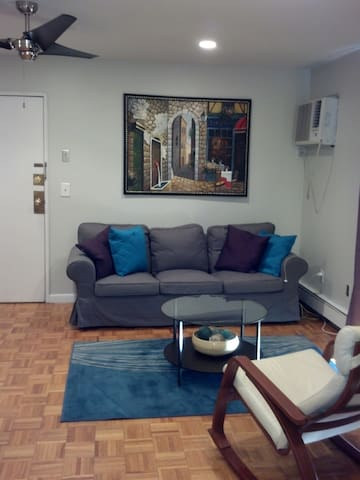 1 BR 1Ba Condo during Super Bowl 14