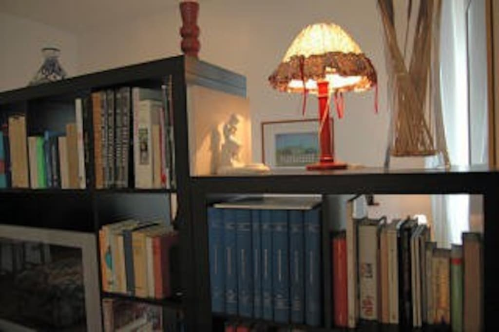 """The library of the living room of 40 squared meters, used for separate a king """"Tatami"""" bed"""