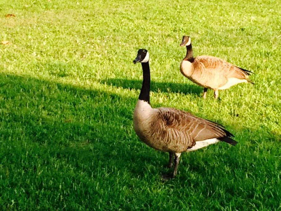 Some of our friends in MacArthur Park
