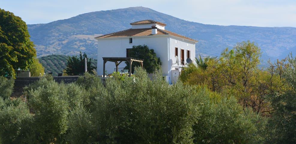 Casa El Castaño - Martos - Oda + Kahvaltı