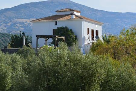 Casa El Castaño - Martos - Aamiaismajoitus