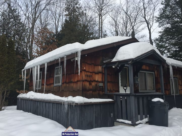 BLACK BEAR LODGE: (AU SABLE RIVER) Snowmobile from this cabin!