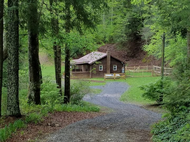 Chloe's Cabin at DogDazed - Dog-friendly Ellijay