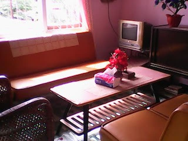 Traditional bungalows mother homestay Padang backpacker