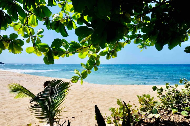 Casita Belén Tropical Hideout 2min/400ft to beach!