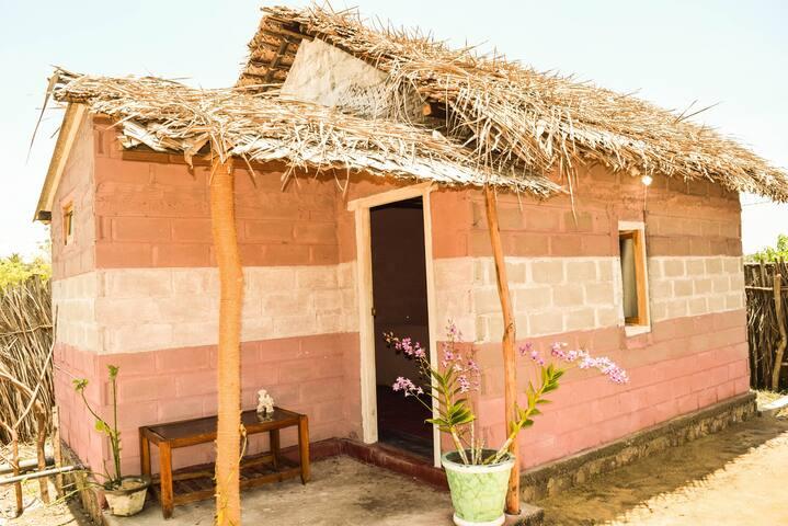 Sun Cabana (3)