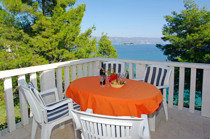 Seaside apartment Olea, spacious, a great sea view
