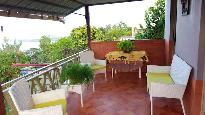 House with one bedroom in La Trinité, with wonderful sea view, furnished garden and WiFi