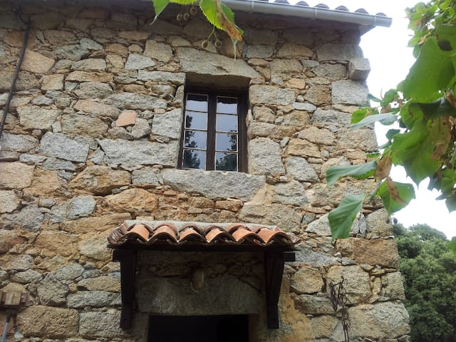 Nous avons conservé les fenêtres, et porte ancienne.